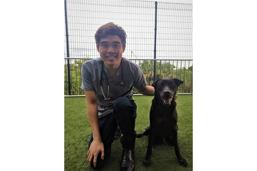 Dr Teo Boon Han, a veterinarian in the Animal & Veterinary Service under the National Parks Board.