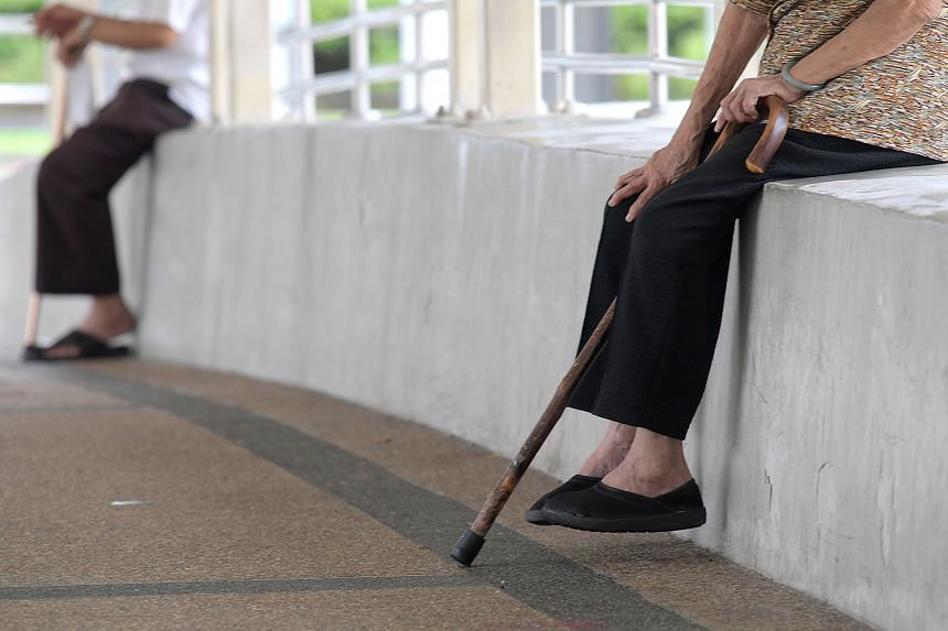 Many seniors have had to forgo their daily walks during the circuit breaker. Experts suggest they can do more housework and physical activities in a safe environment, such as gardening.