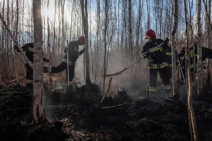 Firefighters extinguish a bushfire in Biebrza National Park, in Poland, on April 23, 2020.