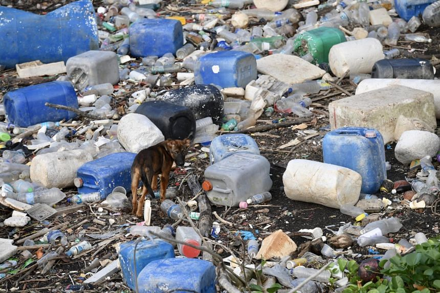 In 2019, about 930,000 tonnes of plastic waste were generated in Singapore, with only 37,000 tonnes recycled.