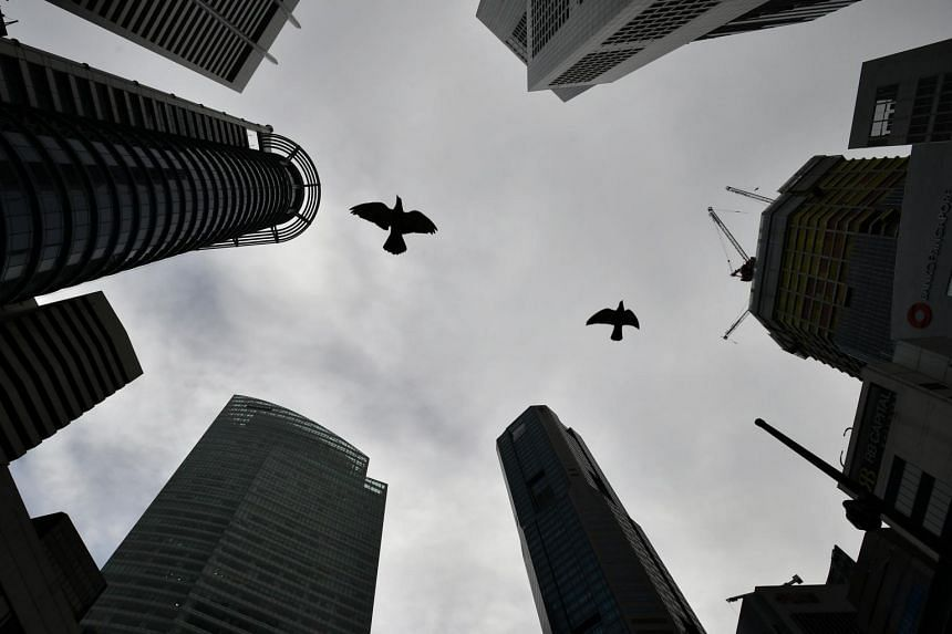 Birds fly above Raffles Place Park on June 7, 2020.