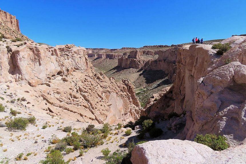 Bolivia's must-see sights include its salt flats, Laguna Colorada and Anaconda Canyon (above).
