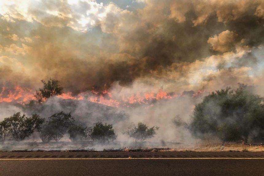 The Bush Fire, around 48km northeast of Phoenix, has burned over 25,900 ha since June 13, 2020.