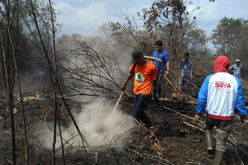 A firefighting team at work in Riau, Indonesia, during the dry season in 2019.