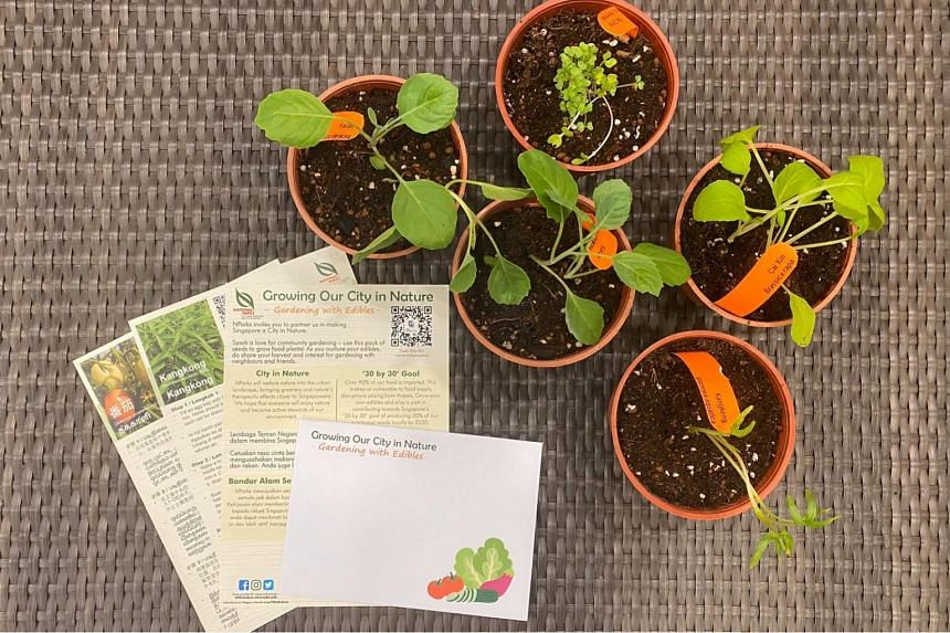 Instructions on how to grow the vegetables will come with the packs of seeds.