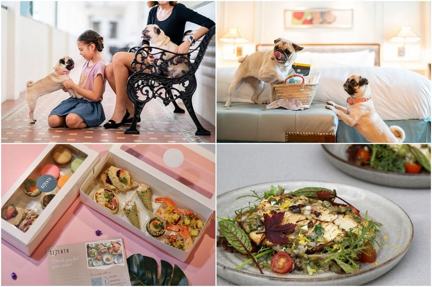 (From top left, clockwise) Pet-friendly InterContinental Hotel in Bugis, tilapia dish and gourmet care pack.