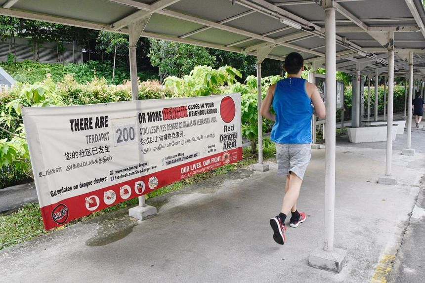 Singapore had 211 active dengue clusters as of June 15.