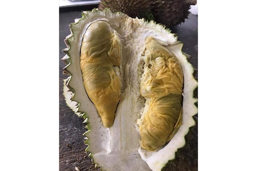 A new variety called D226 Tupai King (above) has been getting the market's attention. Tupai is Malay for squirrel and it is said that the animal is particularly fond of this fruit, which has been described as buttery and syrupy, with an alcoholic note.