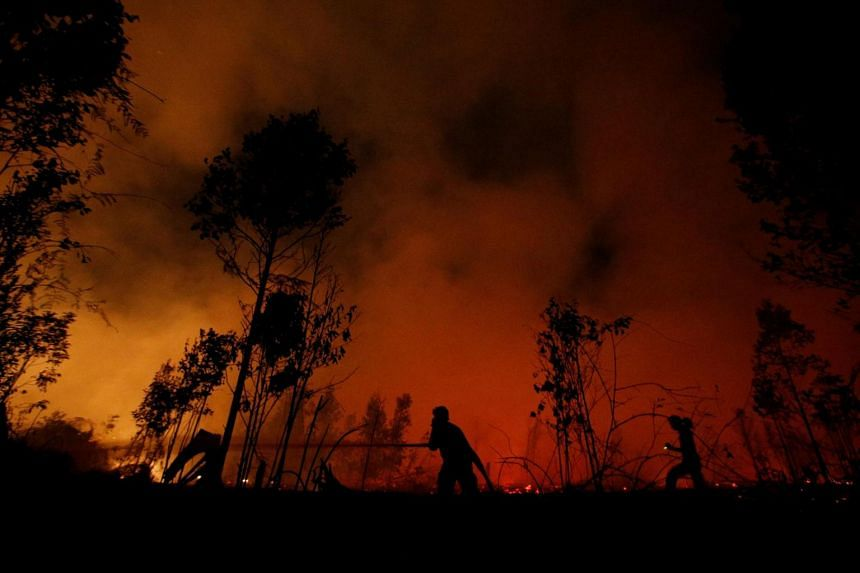 A photo taken on Sept 14, 2019, shows firefighters extinguishing forest fires in Palangka Raya, Central Kalimantan.