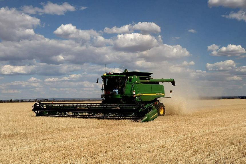 Australian rice planting and output have slumped more than 90 per cent since the 2017-18 season.
