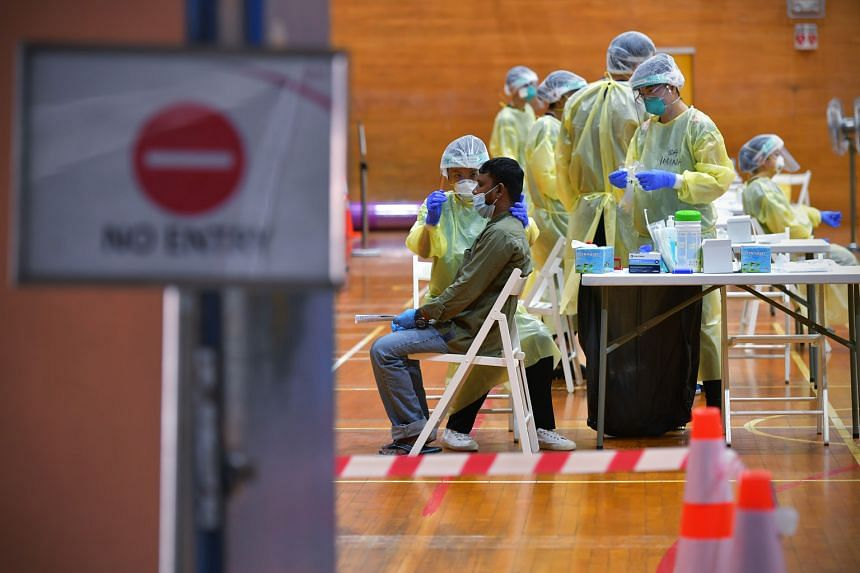A man going through a swab test for the coronavirus last month at a regional screening centre set up in a sports hall in Bukit Gombak. About 80 per cent of the 323,000 workers living in dorms here are expected to have recovered from Covid-19 or to te