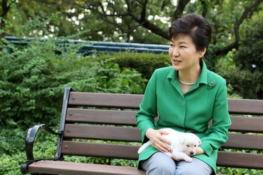 Park Geun-hye was South Korea's first female president.