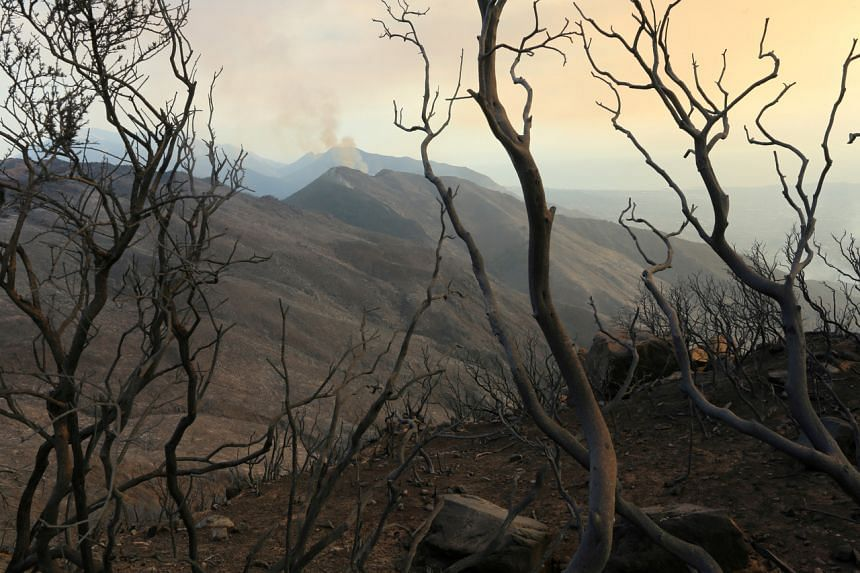 The economic output under particular wildfire threat rises to US$4.4 trillion under a more severe climate change scenario.