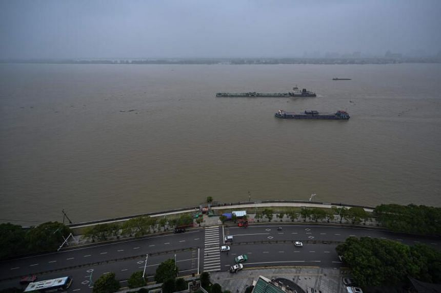Increased human activity in recent years has damaged biodiversity along the Yangtze River.