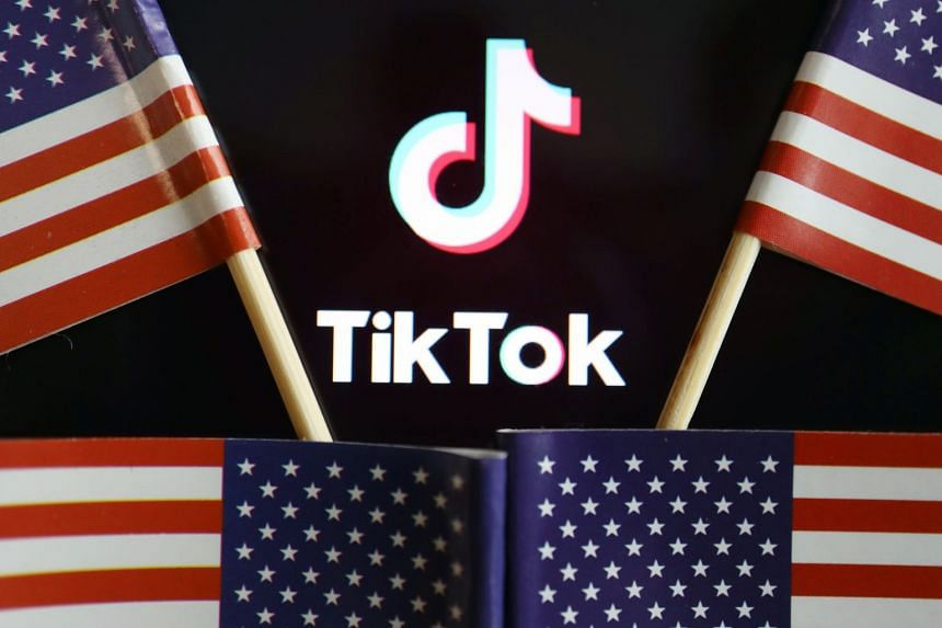 US flags are seen near a TikTok logo in this illustration picture.