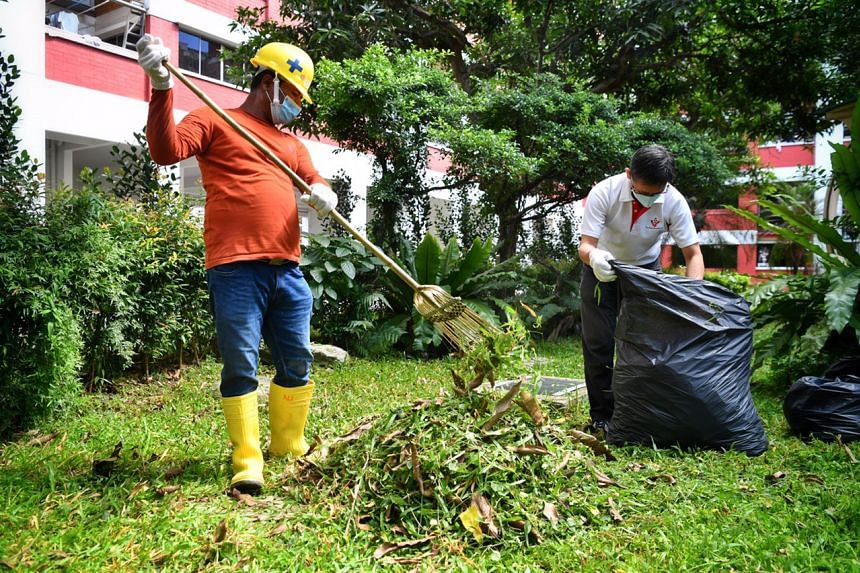 The migrant workers helped trim some 1.5 hectares of overgrown grass around Housing Board blocks in Toh Yi.