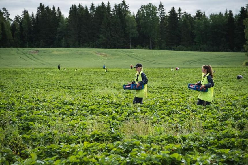 The current pandemic has led governments across the world to reboot the agricultural sector.