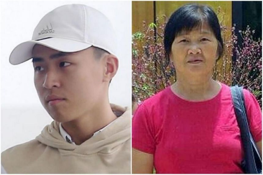Nicholas Ting Nai Jie caused Madam Ang Liu Kiow to suffer severe brain injuries after he hit her while riding his electric scooter in 2016.
