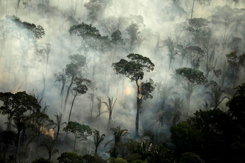 Smoke billows from a fire in an area of the Amazon rainforest,in 2019 in Brazil.