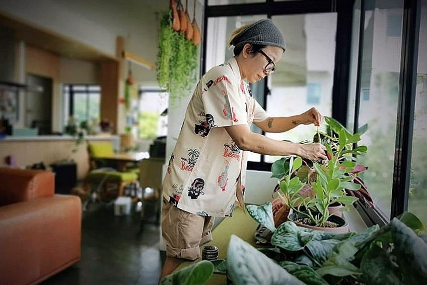 """Ms Patricia Law, who has 77 plants at home, finds it therapeutic to care for her """"babies""""."""
