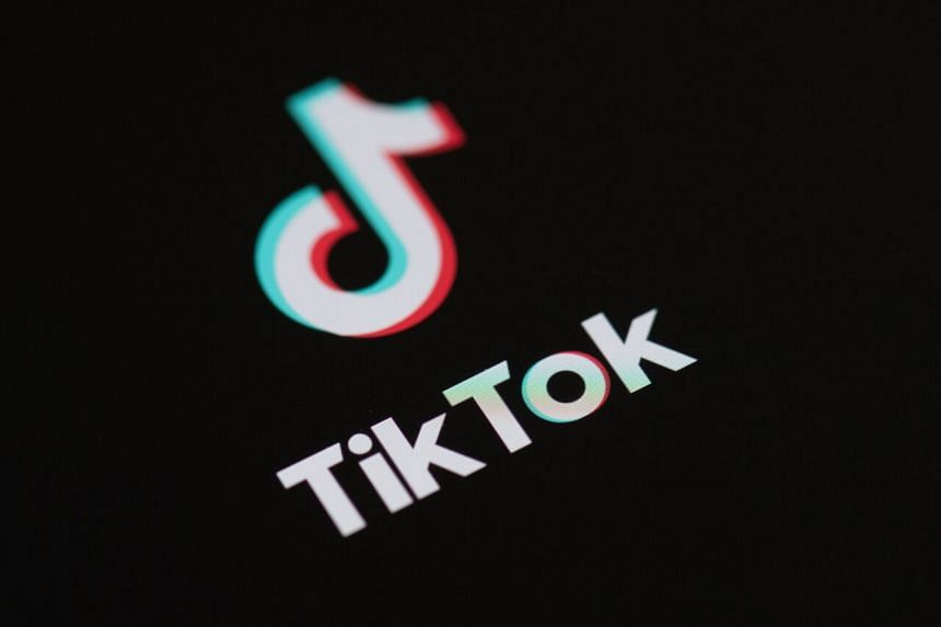 TikTok has had a fraught relationship with the US government for some time.
