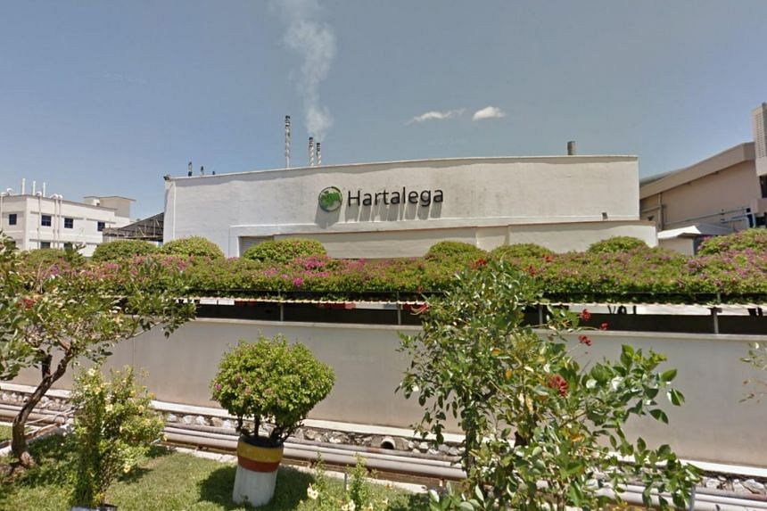 Hartalega is the second-largest medical glove manufacturer in Malaysia by market value.