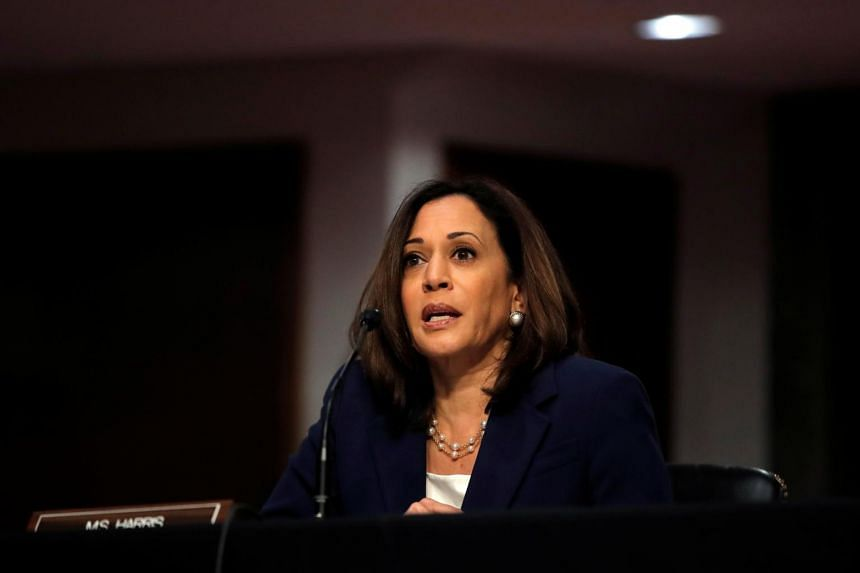 US Senator Kamala Harris was born in California in 1964 to a father from Jamaica and a mother from India.