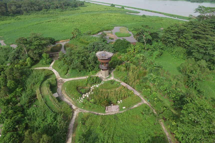 The Kranji Marshes (left) will be part of the new Sungei Buloh Nature Park Network. The new nature zone will be more than three times the size of the Sungei Buloh Wetland Reserve, and comprise wetlands, marshes, nature parks and eco-corridors. PHOTO: