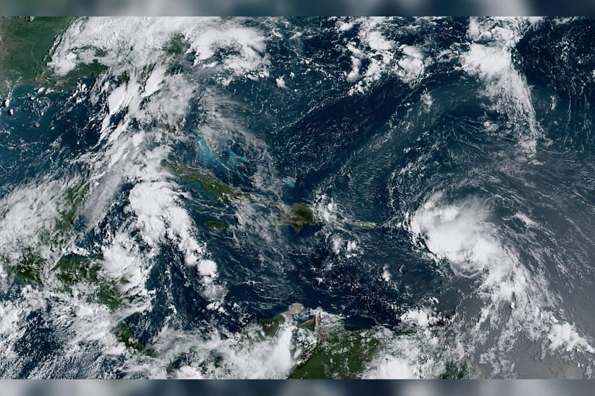 Tropical Storm Laura (right) has top winds of 72kmh and is expected to move west across much of the Greater Antilles.