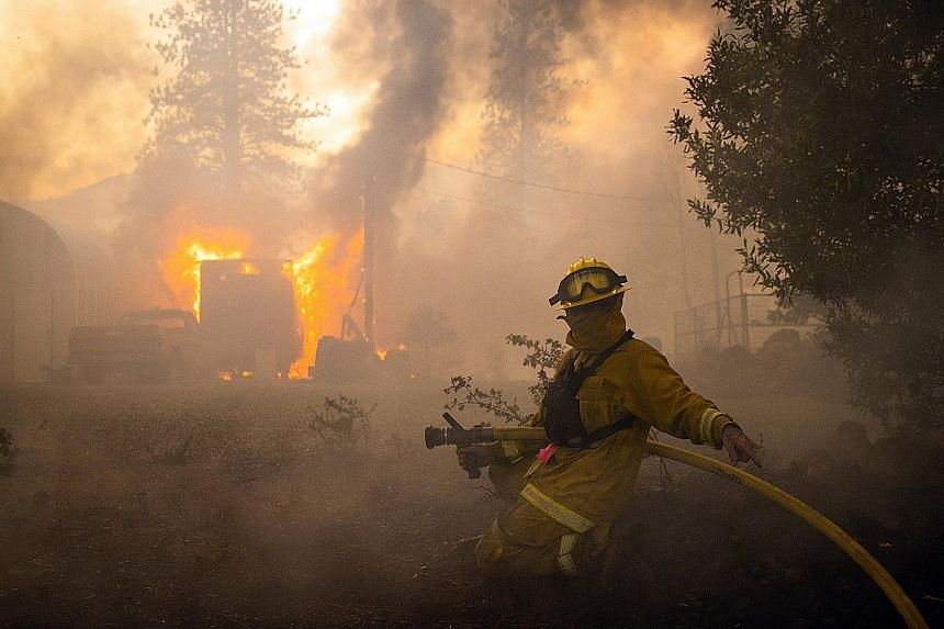 A firefighter at work against a blaze in Pope Valley, California. At least six people have died and many more injured as a result of the wildfires.