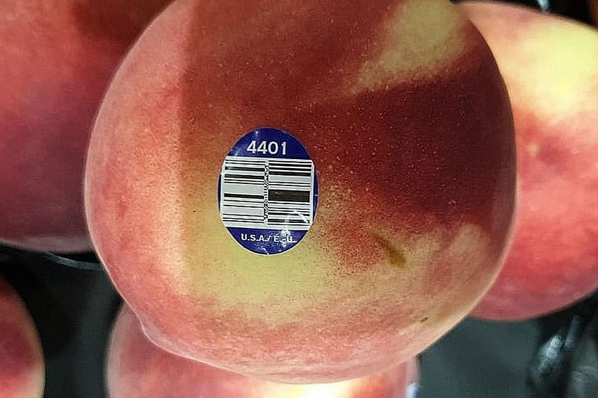 The Singapore Food Agency said on Tuesday that it had told importer Satoyu Trading to recall peaches packed or supplied by Prima Wawona or Wawona Packing Company.