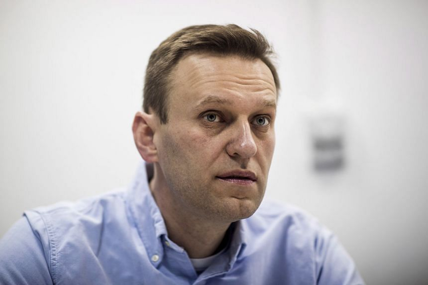 Navalny (above) suddenly fell seriously ill in August 2020 as he took a flight in Siberia.