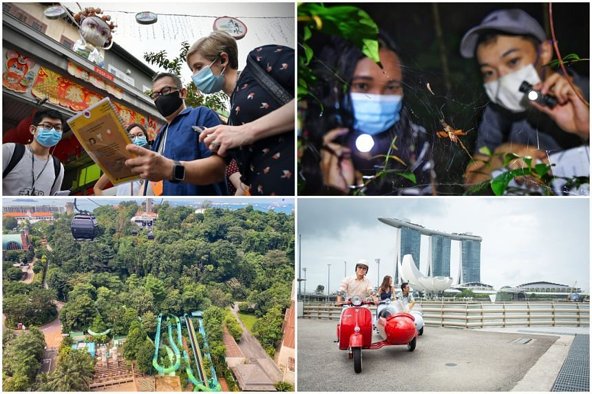 (Clockwise from top left) Solve a murder mystery in Chinatown, learn more about local wildlife, take a Crazy Rich Asians tour around town or view Sentosa from the air.