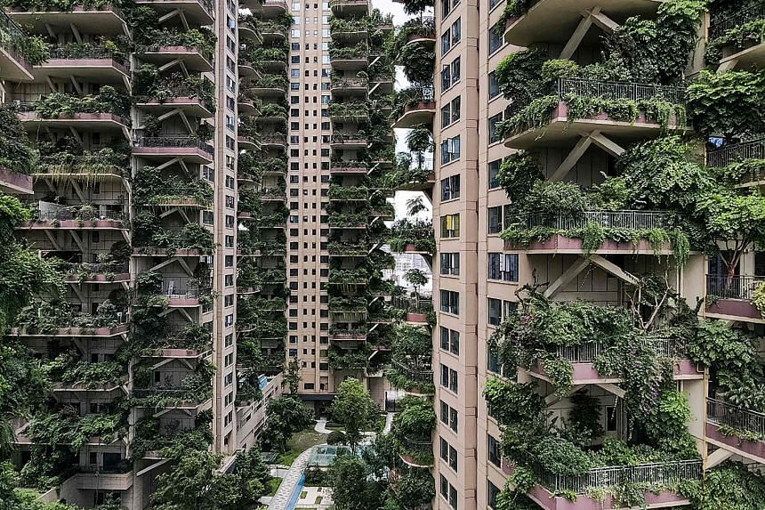Qiyi City Forest Garden in Chengdu was built in 2018, with every balcony designed with space for plants to grow. With few tenants to care for the plants, the towers were overrun by them and invaded by mosquitoes. Due to an infestation, only a handful