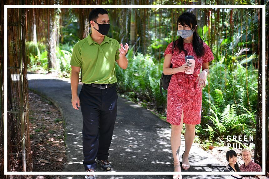 Minister for National Development Desmond Lee speaks to Straits Times environment correspondent Audrey Tan on his vision for a City In Nature in this podcast.
