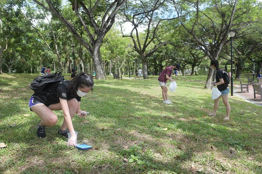 (From left) Students Sabrina Lee, Samuel Tay and Tay Ming Yi, all aged 22, picking and photographing litter at Punggol Park yesterday, as part of a campaign that encourages participants to document litter on Litterati, an app that tracks the progress