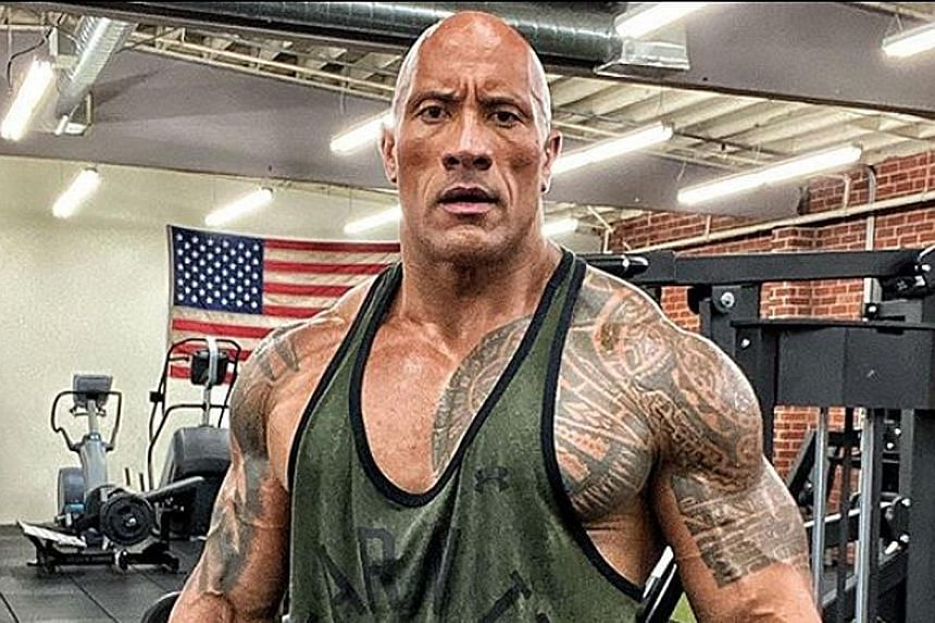 "Actor Dwayne ""The Rock"" Johnson (above) posted a photo of the front gate that he had ripped off last Friday."