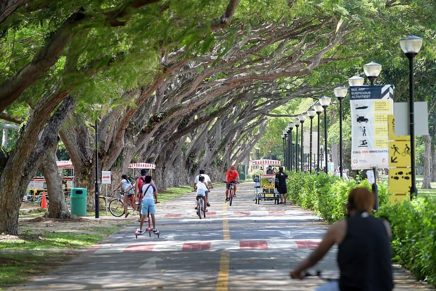 The new central green corridor between East Coast and Changi Beach parks will connect to other parks and gardens in the area via a network of community corridors.