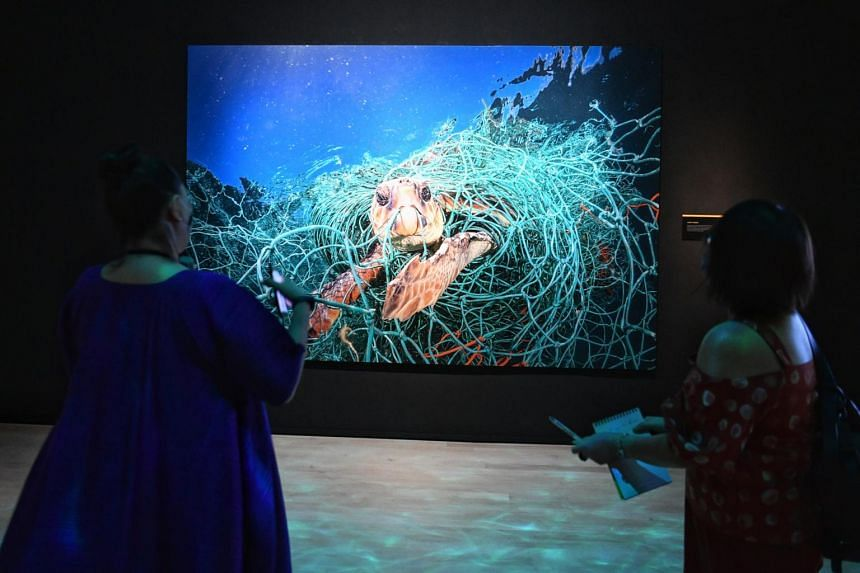 A National Geographic photograph of marine life affected by plastic pollution at the ArtScience Museum's exhibition.