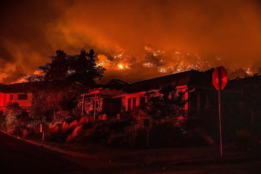 The Shady Fire closing in on homes in California's Santa Rosa yesterday as the Glass Fire forced evacuations in nearby Napa Valley.