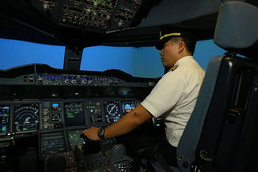 The public can also pay to try out the flight simulator that pilots use for training.