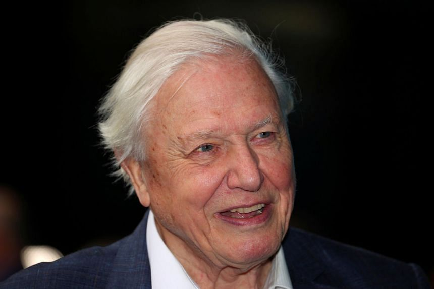 A 2017 photo shows broadcaster and film maker David Attenborough attending the premiere of Blue Planet II in London.