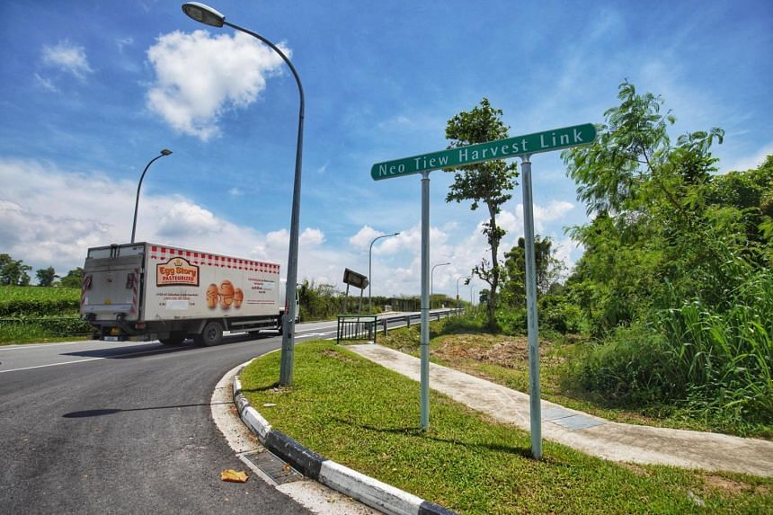 About 390 hectares of land at Lim Chu Kang will be redeveloped into a high-tech agri-food cluster.