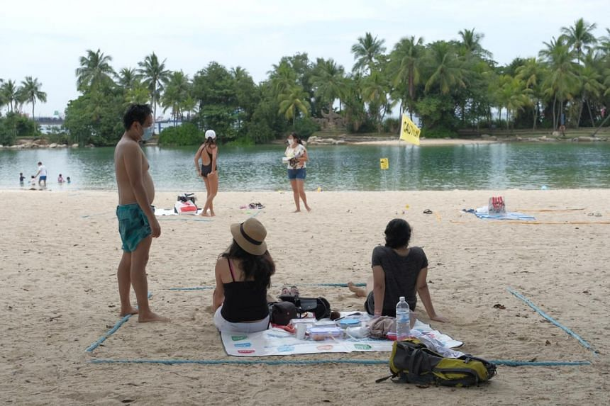 Beachgoers at Sentosa's Siloso Beach will not be allowed to enter the water following sightings of box jellyfish.