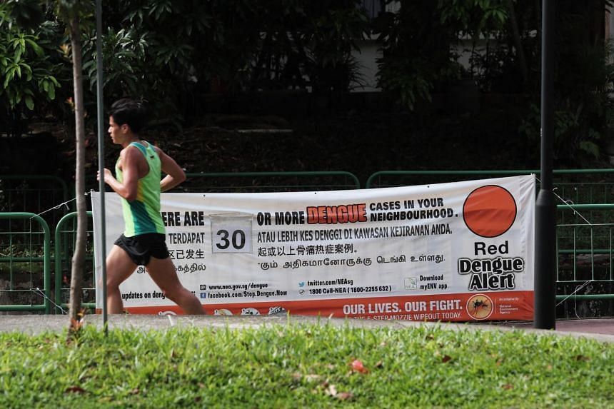 A total of 532 new dengue cases were reported last week.