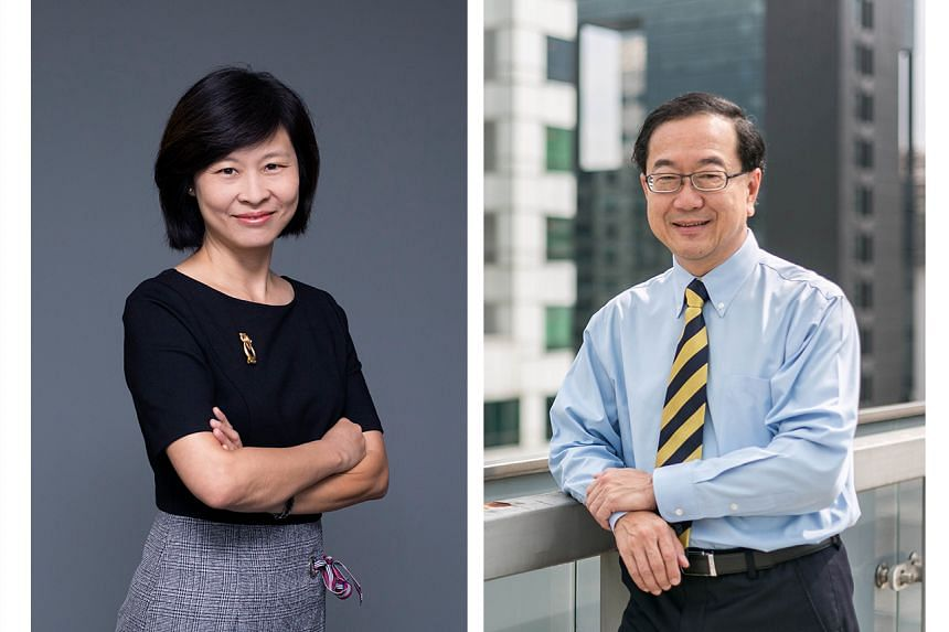 Mrs Tan-Soh Wai Lan will take over from Mr Chia Mia Chiang as the Nanyang Academy of Fine Arts president.