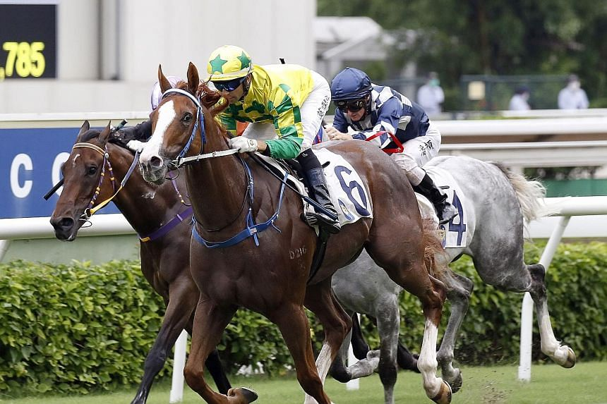 Sky Field (No. 6) is a supreme talent looking for his fourth consecutive win. It looks like he will relish the 1,400m trip in today's final race at Sha Tin.