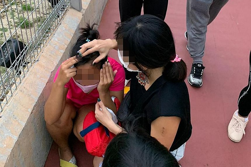 Facebook user Derek Yap said his helper suffered bruising after she was hit on the head by a golf ball at the Jurassic Mile stretch.