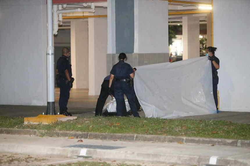 The woman and baby were found lying motionless at the foot of the block and were pronounced dead at the scene.