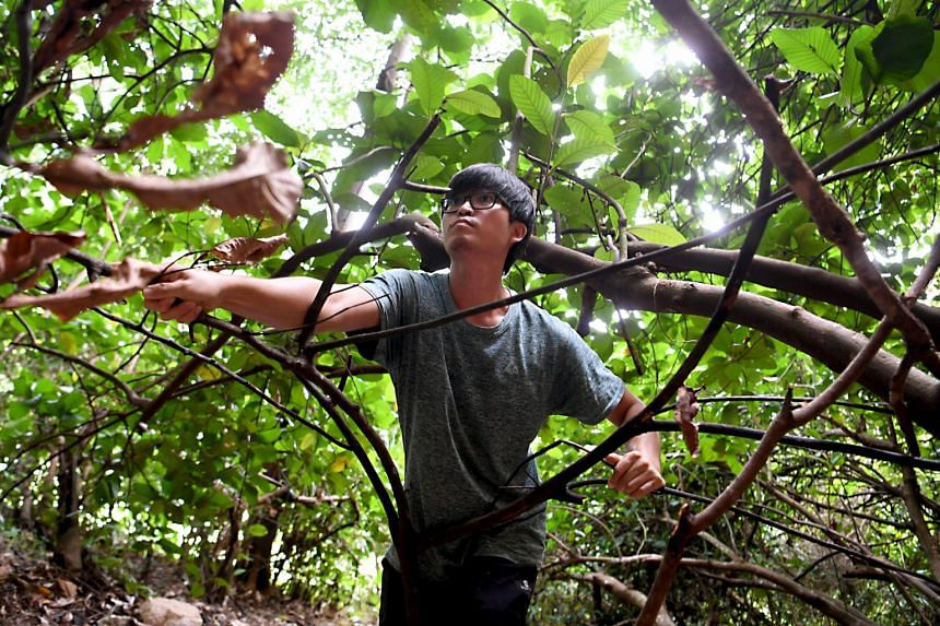 Mr Glen Poh (above) has seen a 30 per cent uptick in enquiries and sign-ups for the wilderness survival courses he offers.